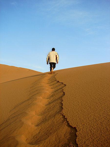 450px-desert_leader